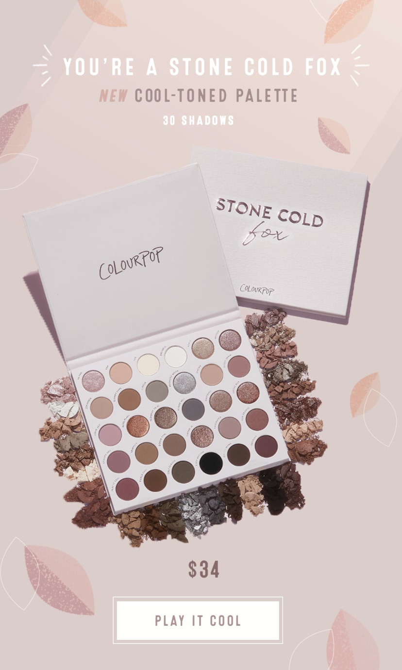 NEW Cool Toned Palette Stone Cold Fox 30 shadows